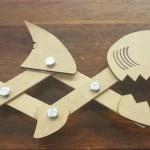 shark snapper